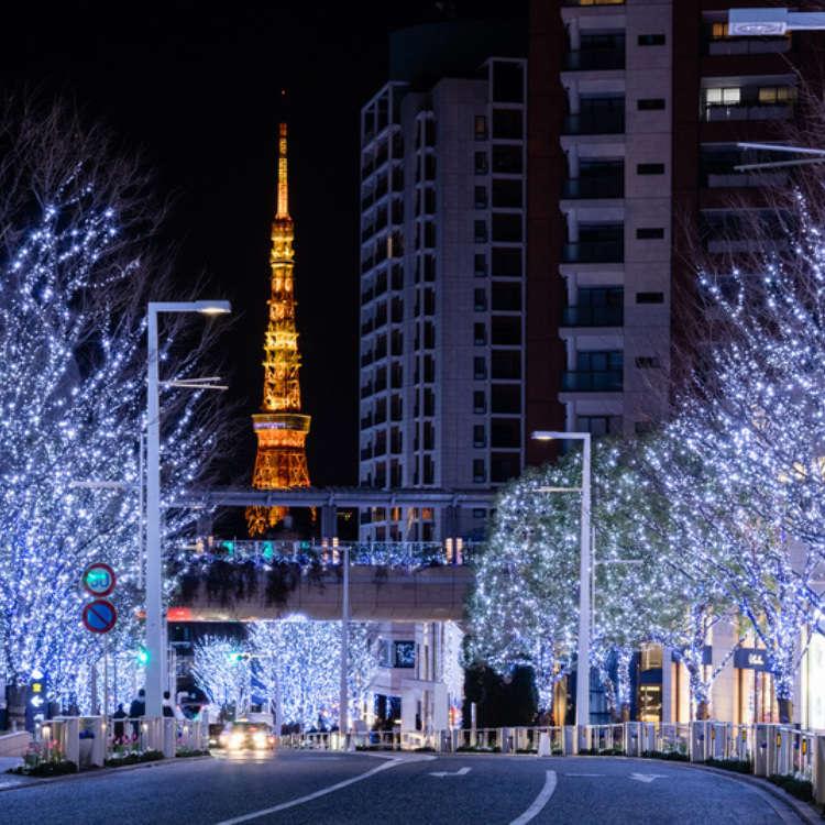 【2017年】冬の夜を彩るイルミネーションスポット8選