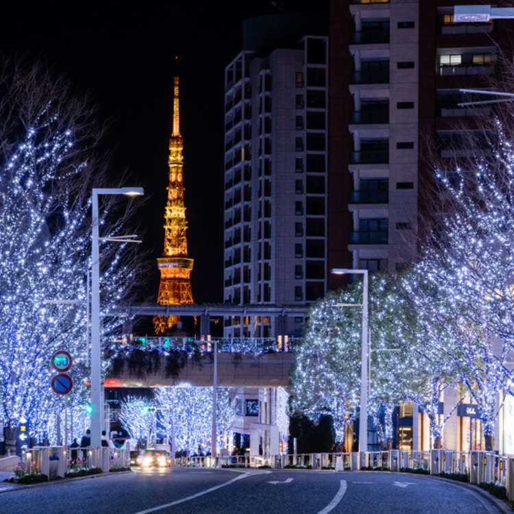 [2017] Holiday Magic: Tokyo's Top 8 Winter Illuminations