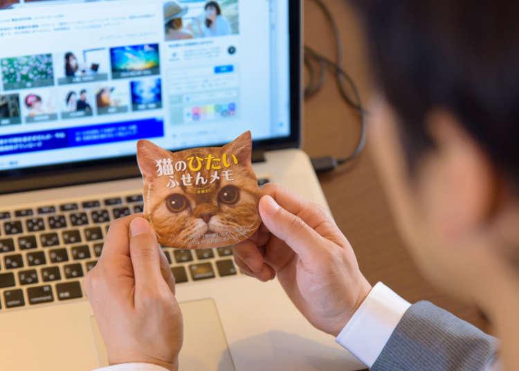 「猫のひたいふせんメモ」で職場全体が癒される