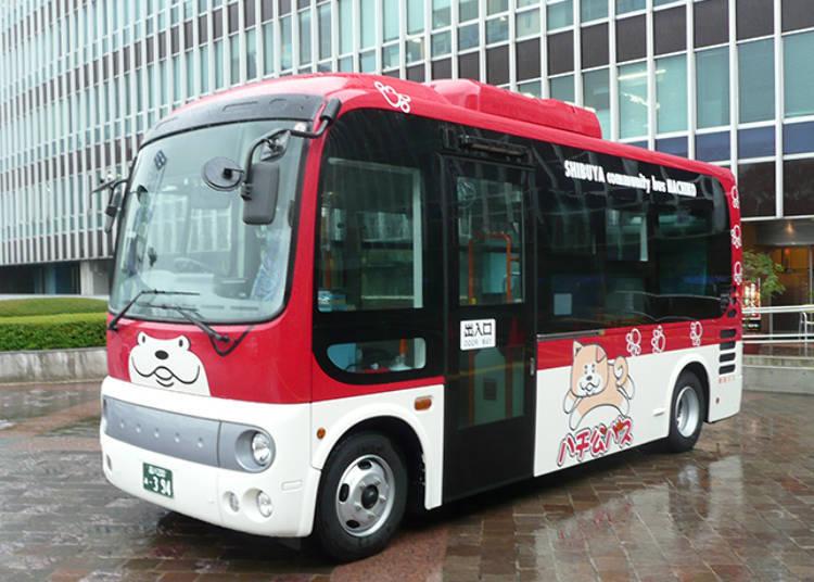 乘坐巴士体会涩谷的魅力!