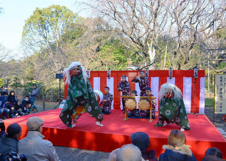 Celebrating the New Year at Rikugien Garden