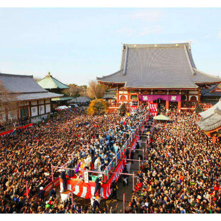 The Colors of Early Spring: Tokyo's Best Events and Flower Viewing Spots in February
