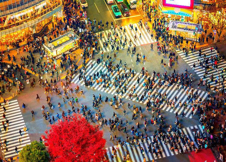 Shopping Spots in Shibuya, Harajuku and Omotesando