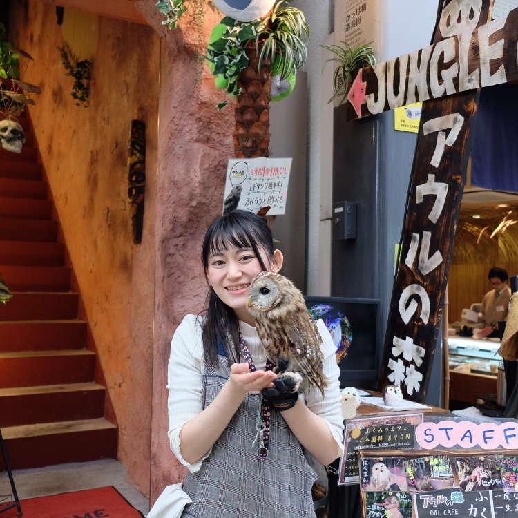 """Peminat Burung Hantu Mesti Ambil Tahu! Apa Yang Anda Tidak Tahu Tentang """"Wild Asakusa""""! Jom Ke Kafe Burung Hantu"""