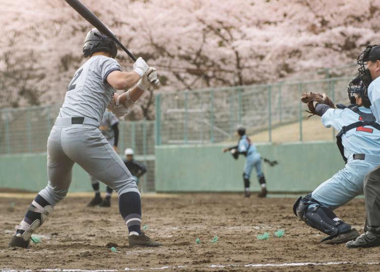 日本の国民的スポーツ、野球