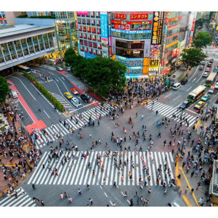 """东京人气地区""""涩谷""""的景点"""