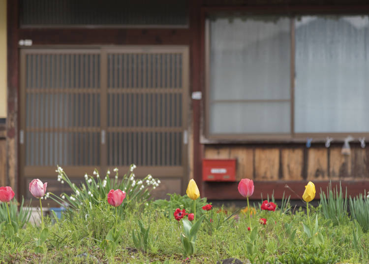 Farmhouse and Townhouse: the Characteristics of Kominka