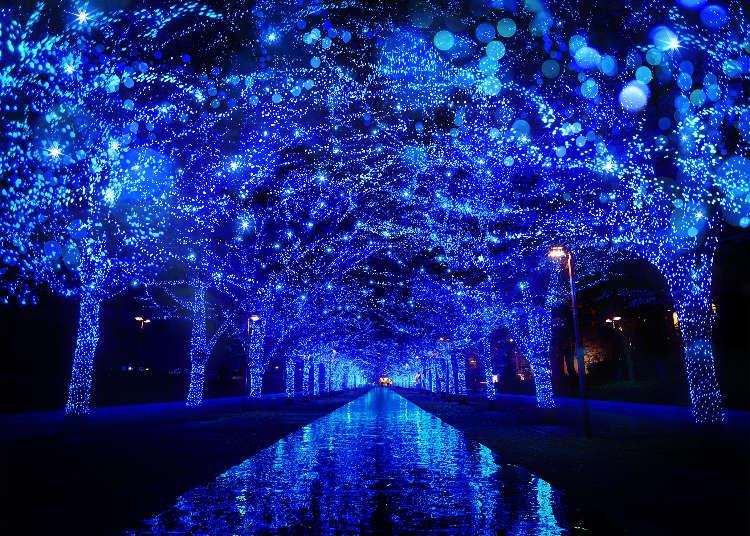 全新的燦爛東京!今年首度登場與備受注目的東京燈飾5選