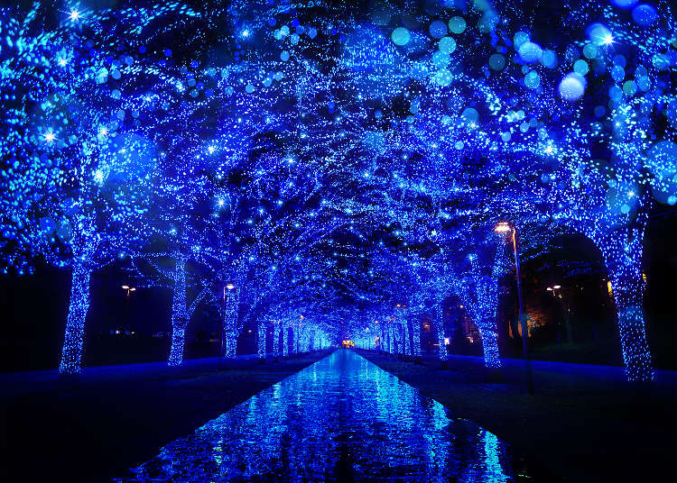 Lighting Up the Winter: Tokyo's Top 5 Shiny New Illumination Highlights