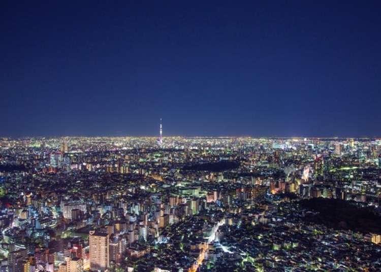 海拔251米的圣诞节!在阳光城尽享辉煌灿烂的夜景