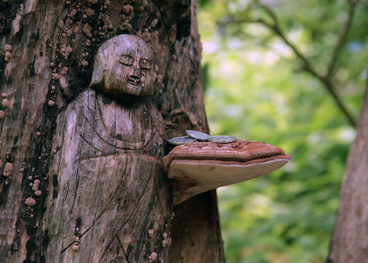 The History of Buddhism in Japan