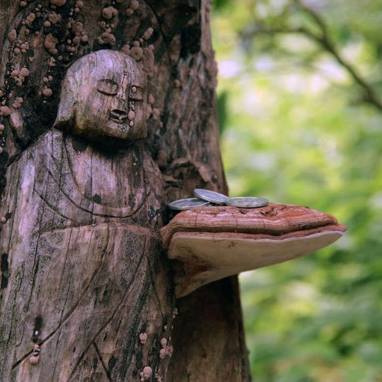 Sejarah Aliran Budha di Jepang
