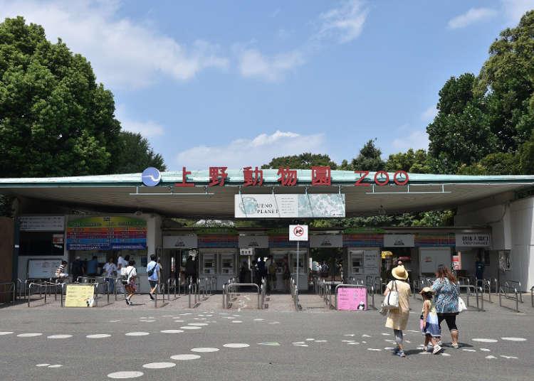 日本最古の動物園「上野動物園」へ行こう