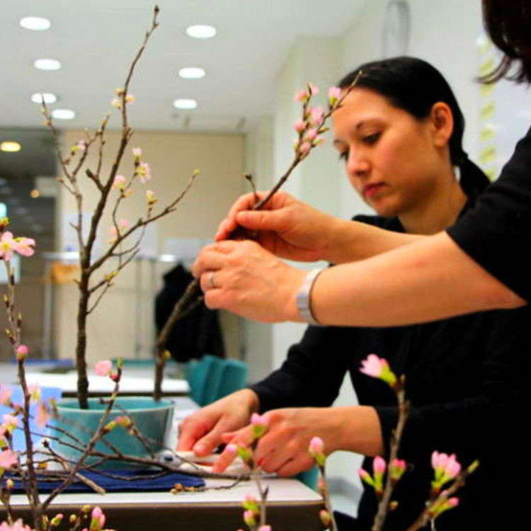 Learn the Art of Flower Arrangement at Ohara School of Ikebana