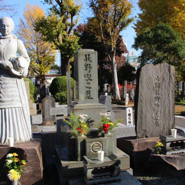 雑司ケ谷霊園 − その意外な魅力に迫る