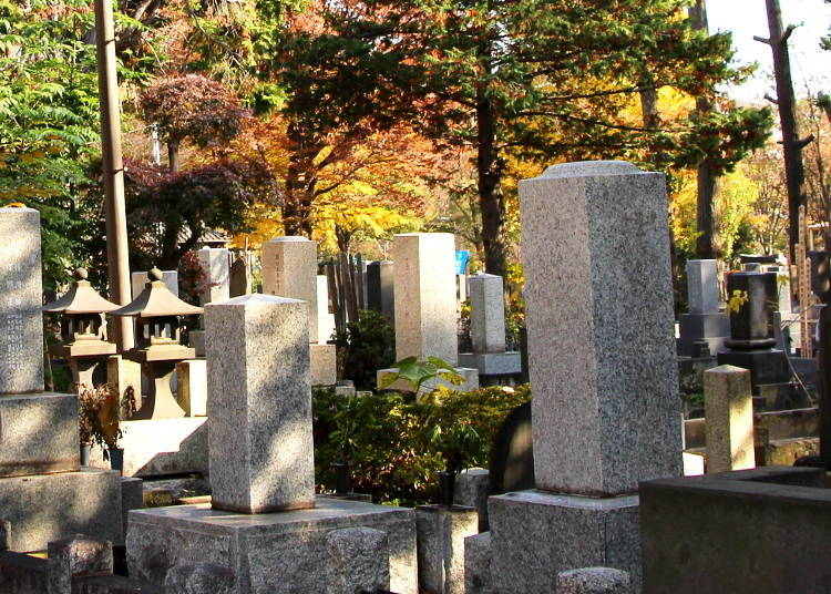 Inspired by the Dead: Zoshigaya's Creative Minds