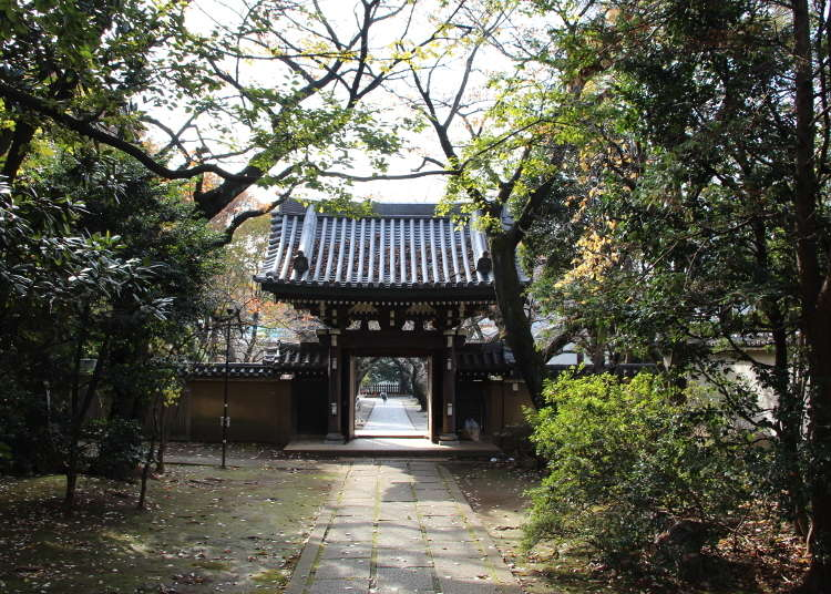 Zoshigaya: Explore Tokyo's unknown side