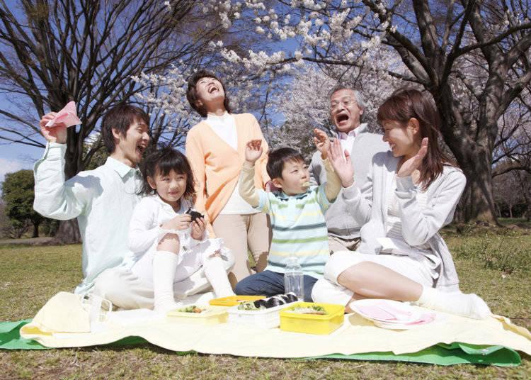 Enjoying Japanese cherry blossoms: Hanami Parties!
