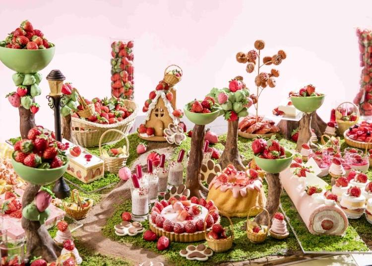 Hilton Tokyo Odaiba – Dare to Enter the Strawberry Forest?