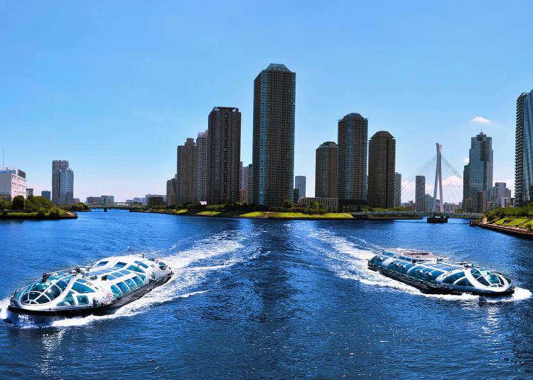 서울의 한강에 유람선이 있다면 도쿄의 스미다강에는 다양한 크루즈선이 있다!