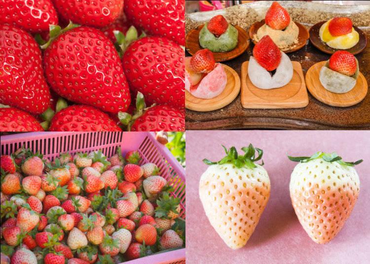 いわずと知れた日本の春の果物、いちご