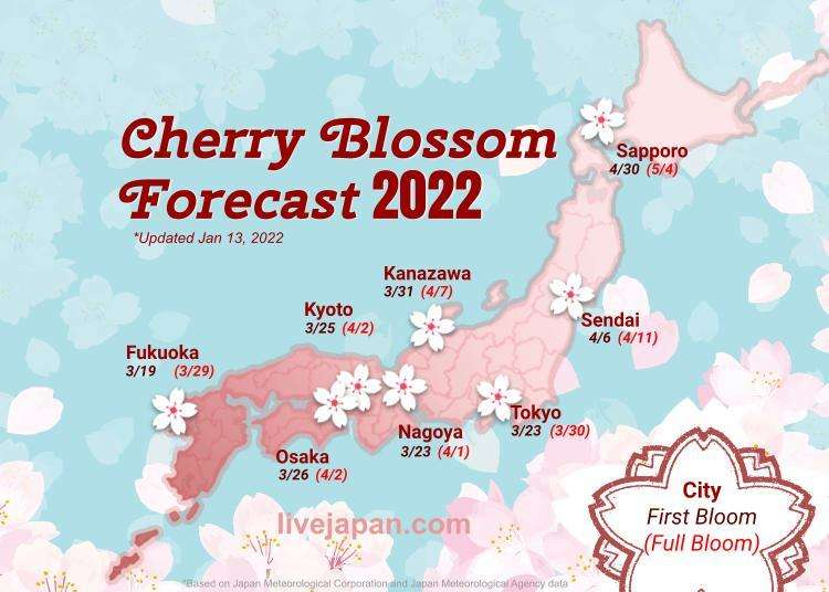Japan 2019 Cherry Blossom Forecast: When and where to see sakura in Tokyo, Kyoto and beyond!