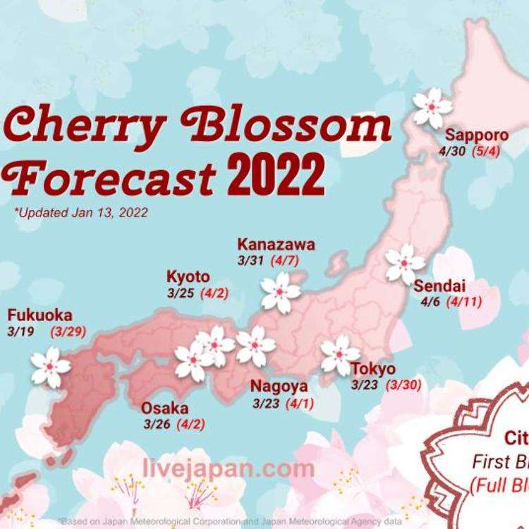 Japan's 2017 Cherry Blossom Forecast