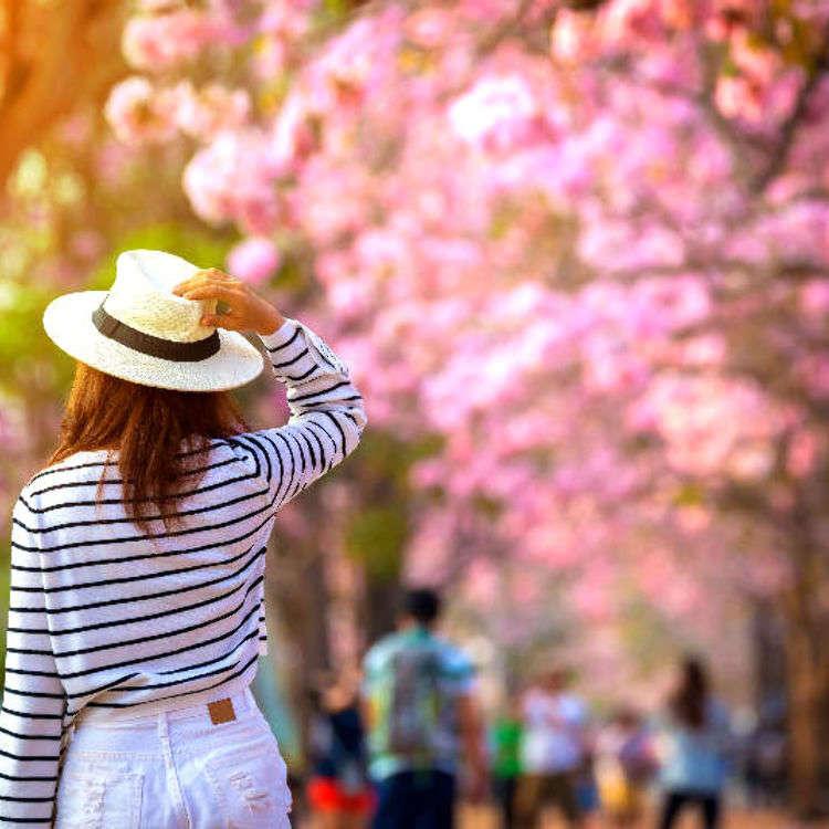 春の天気と服装・花見情報を観光前にチェックしておこう!