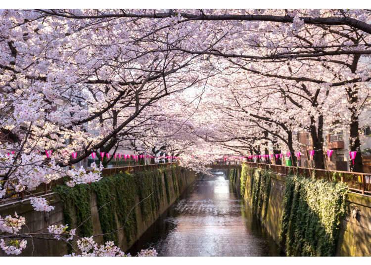 東京春天的服裝穿搭小建議