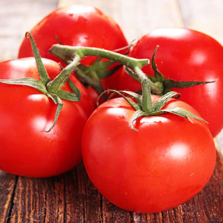 トマトが一個あったら何を作る?世界で愛されるトマトのレシピを外国人と日本人に聞いてみた!