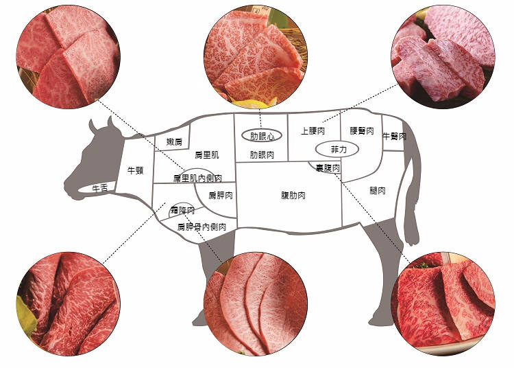 日本人人氣的和牛食用部位