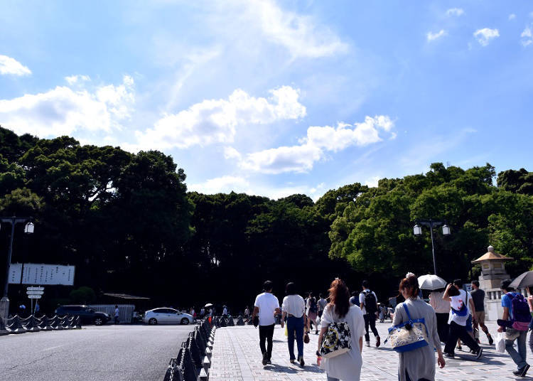 Meiji Shrine: A Sacred Place in the Heart of Harajuku, the Hot Bed of Trends and Fashion
