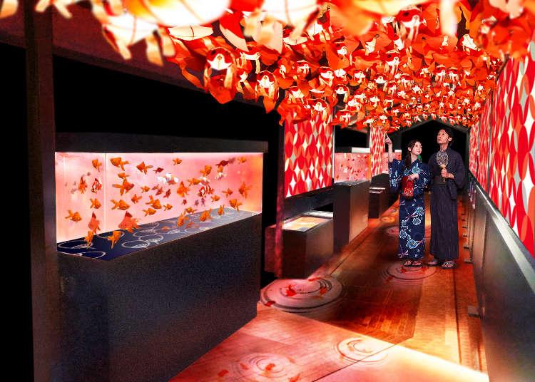 一次欣賞20種金魚漫舞!日本最大金魚展「東京金魚仙境」華麗登場