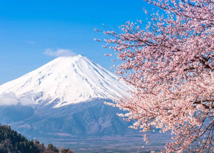 周遊券範圍景點介紹:山梨/靜岡-富士山、河口湖