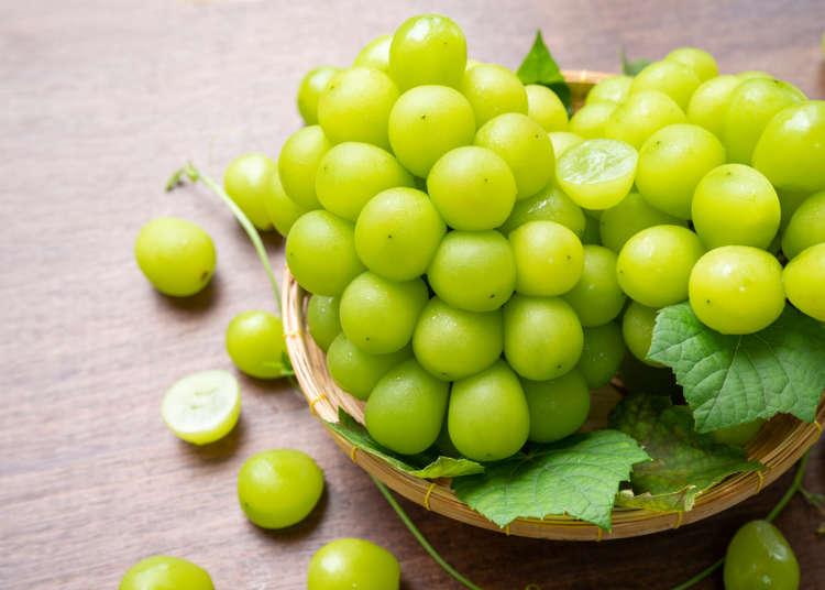 認識日本四季水果系列~夏秋之際風情萬種的葡萄物語!