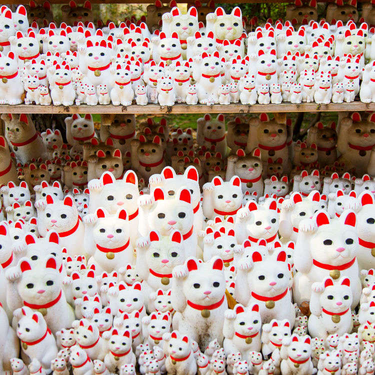 """Gotokuji: The """"Lucky Cat"""" Temple"""
