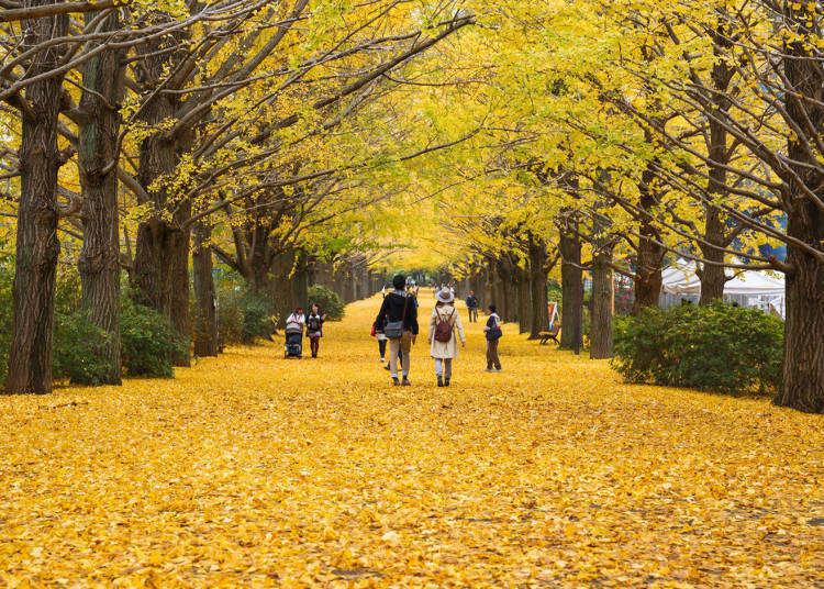 日本東京9月‧10月‧11月秋季天氣、服裝及必備小物