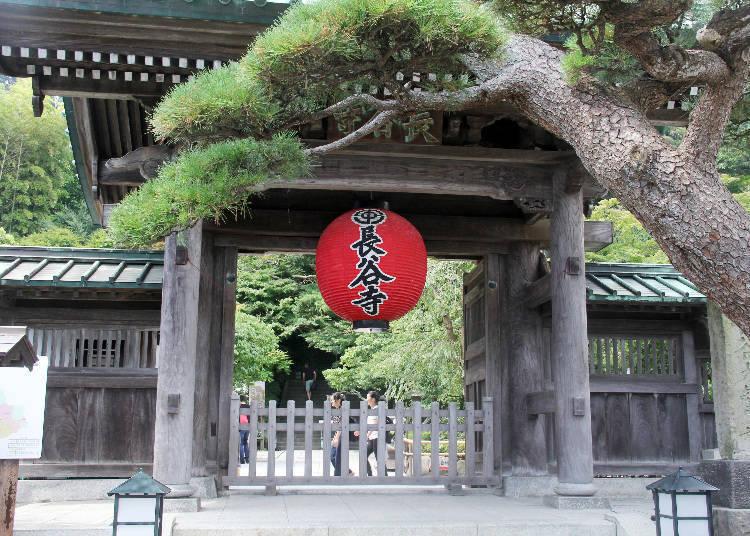 SPOT1)四季の花や眺望が魅力の名刹「長谷寺」