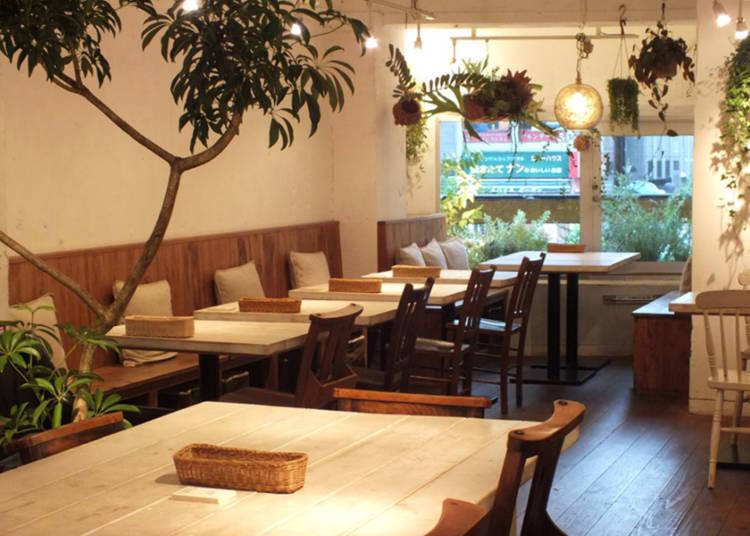 AIN SOPH.journey: Tokyo's Favorite Vegan Lunch Spot!