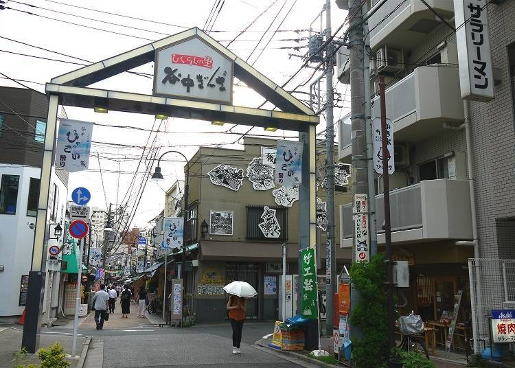 Yanaka: The Town of Cats