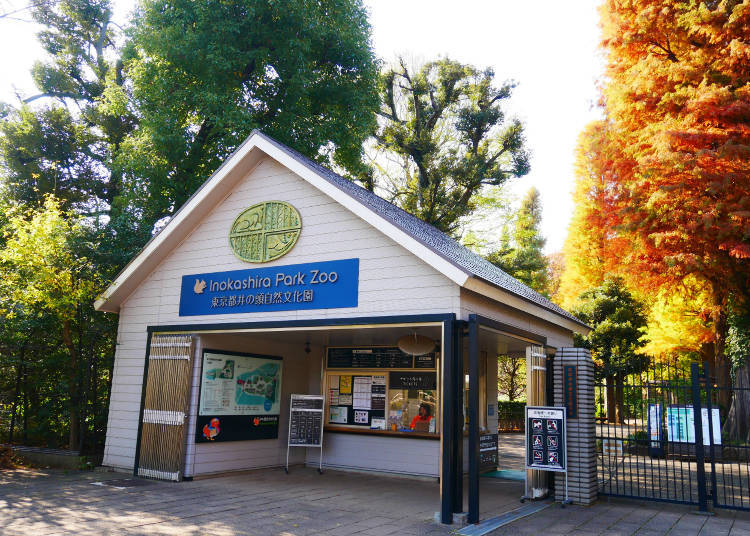 Captivating Inokashira Park Is Free To Enter, But The Different Facilities In And  Around It Are Charged, Such As The Zoo. Itu0027s Filled With Smaller Animals  And Japanese ...