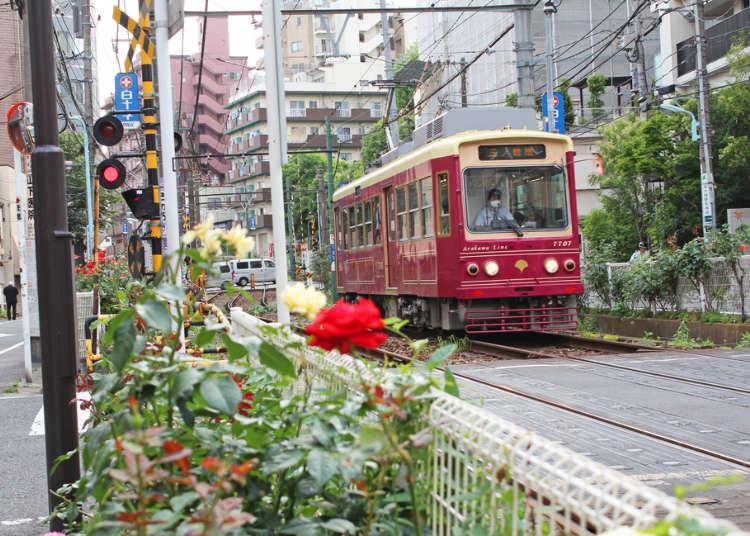 노면전차 도덴 아라카와 선을 타고 떠나는 도쿄산책여행!