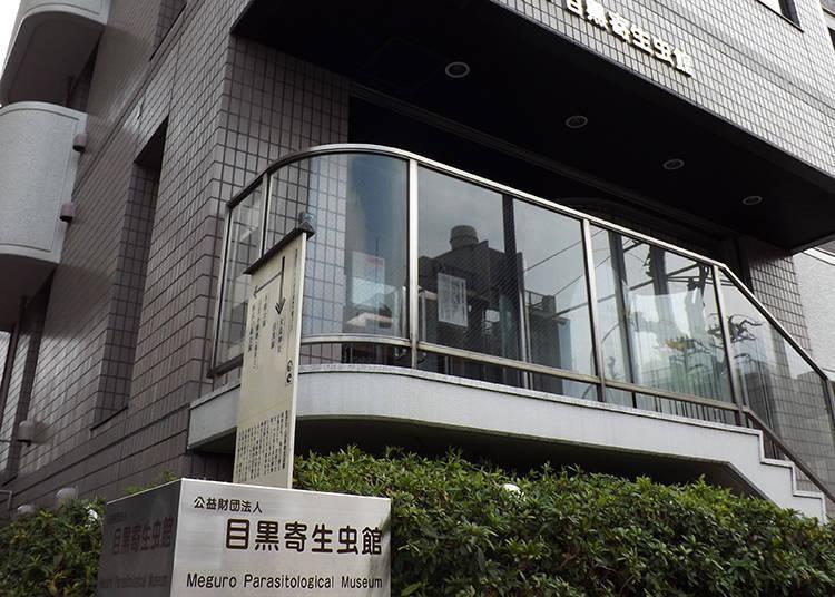 Meguro: Meguro Parasitological Museum