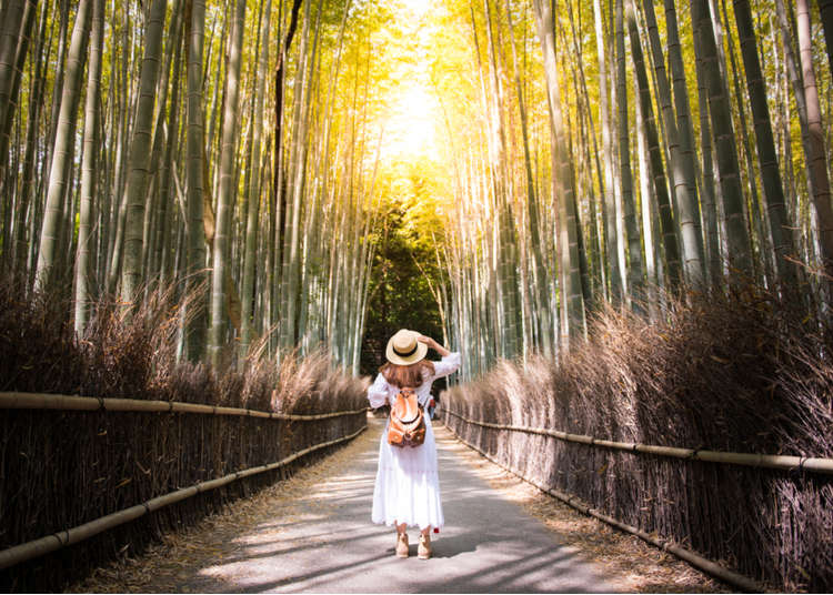 Traveling Japan Alone: Make the Most Out of Your Solo Trip!