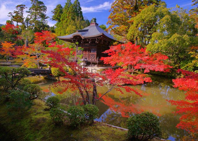 Kết quả hình ảnh cho japan garden