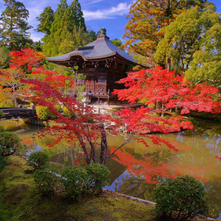 Japanese Gardens - From the exotic to the meditative