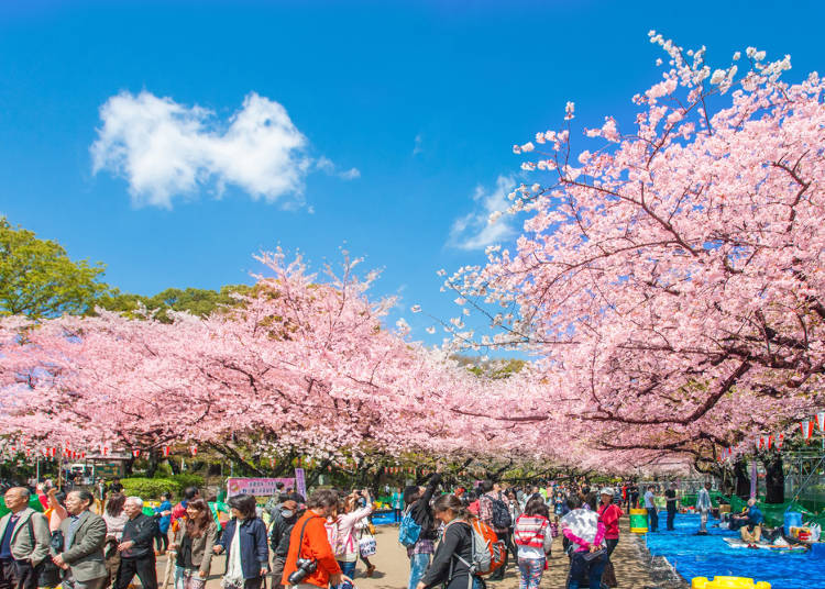 The JR Yamanote Line: Plenty of Must-See Sightseeing Spots!