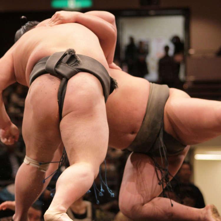 世界も認める日本の相撲について外国人が本音を暴露!相撲の好きなところ、嫌いなところは?