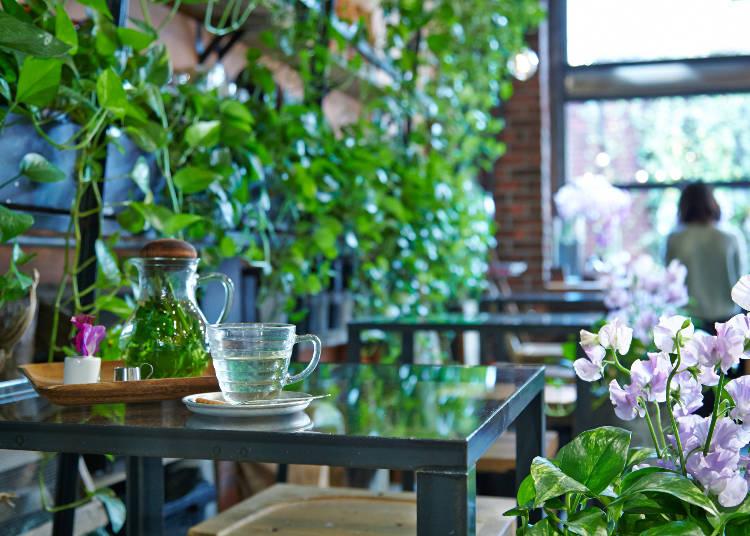在溫室裡捻花惹草,療癒人心的朵朵花潮下午茶『Aoyama Flower Market TEA HOUSE』