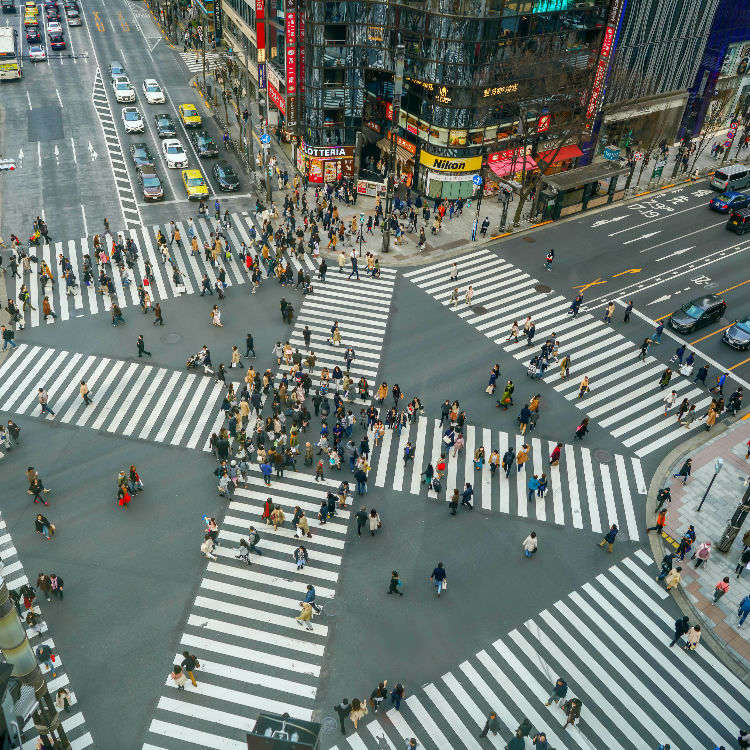 8 Must-See Places for a Day Trip in Tokyo